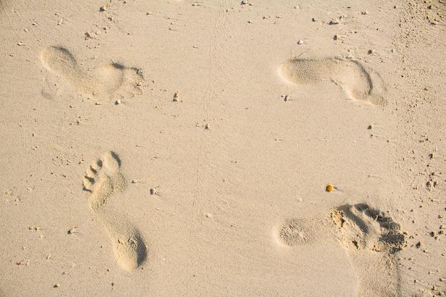Voetafdrukken in het zand prachtig zandstrand in de ochtend