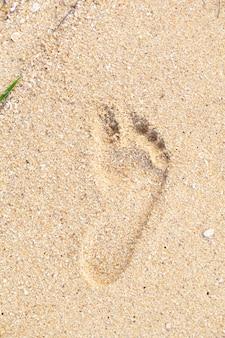 Voetafdrukken in zand bij de strand geweven achtergrond van het nat zandstrand