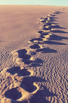 Voetafdrukken op het zand