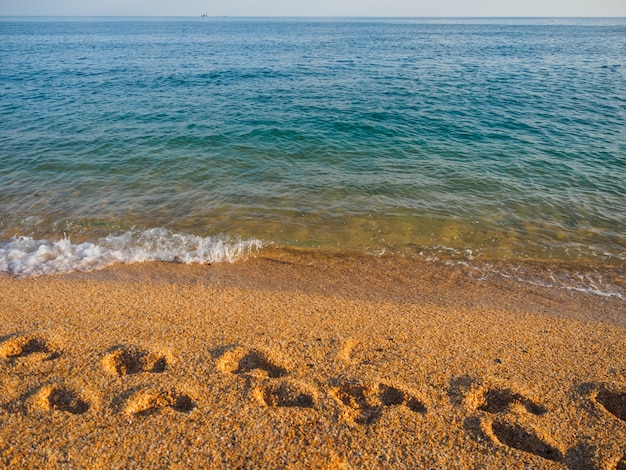 Voetafdrukken op het zeezand. kust