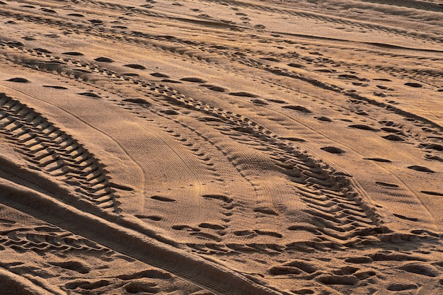 Voetafdrukken, sporen van auto's en meeuwen op het zand