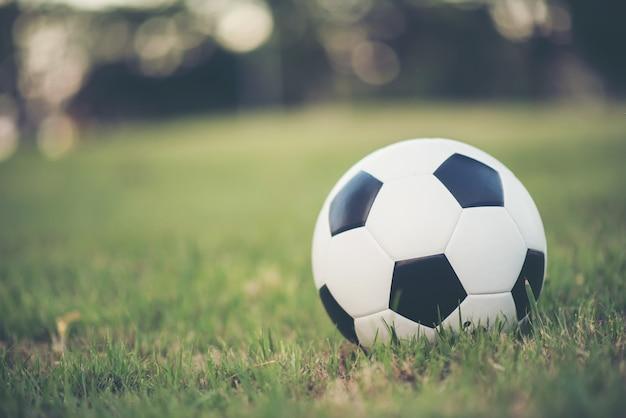 Voetbal op grasgebied in het park