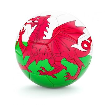 Voetbal voetbal met de vlag van wales