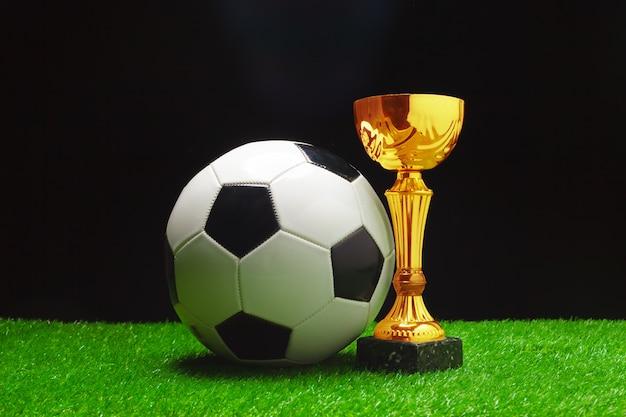 Voetbalbeker met voetbalbal op gras