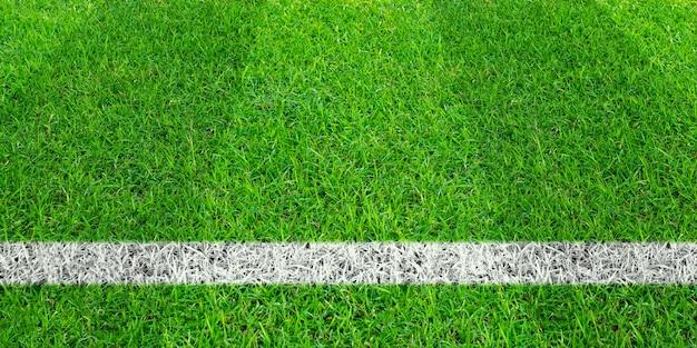 Voetballijn in groen gras van voetbalgebied. groen grasveld patroon voor de achtergrond.