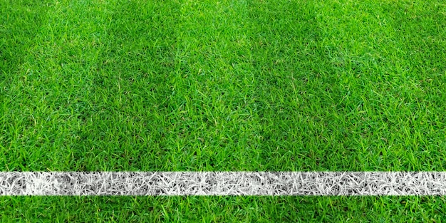 Voetballijn in groen gras van voetbalgebied. groen grasveld patroon voor sport achtergrond.