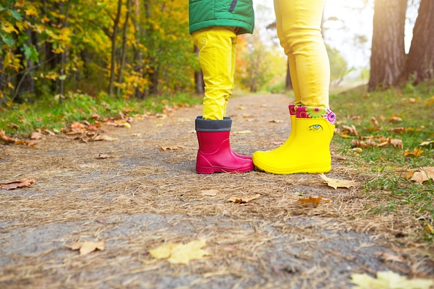 Voeten in rode en gele rubberen laarzen van een moeder en dochter in het herfstbos. seizoensgebondenheid, seizoenen, gevallen droge esdoornbladeren, familiewandeling, gevoel van liefde en zorg, ouderschap
