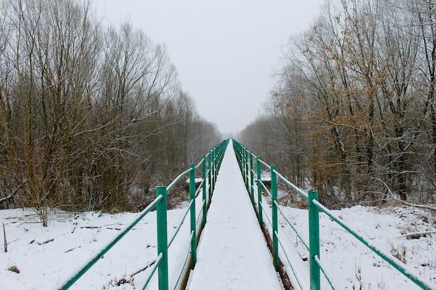 Voetgangersbrug over de rivier naar het bos in de winter
