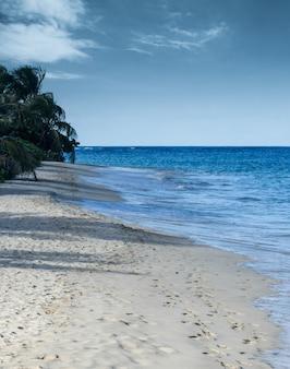 Voetsporen op een wit zandstrand met palmbomen in puerto rico