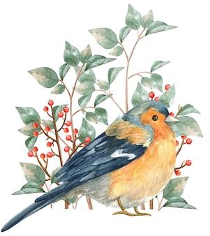 Vogel woodland verhalen aquarel illustratie