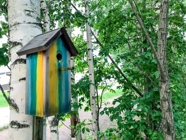 Vogelhuisje op boom in de lente of zomer. vogelvoeder hangt aan berkenboom. blokhuis voor vogels in parkgebied. eenvoudig ontwerp van een vogelhuisje. onderdak voor broedvogels. ruimte voor tekst of logo
