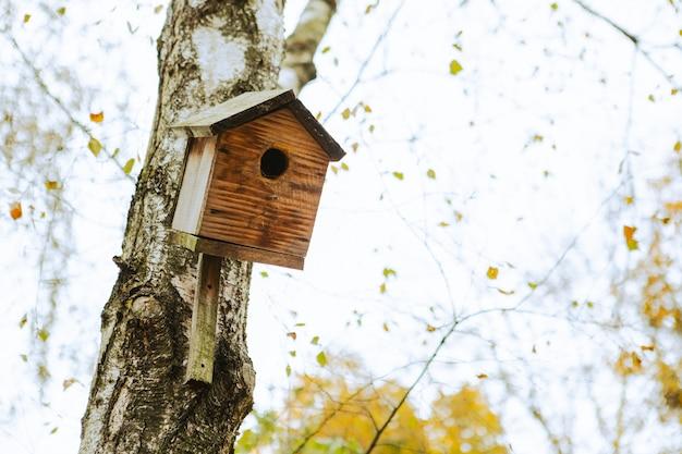 Vogelhuisje op de boom herfst seizoen kopie ruimte