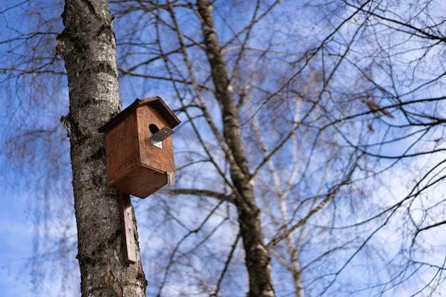 Vogelhuisje voor vogels aan een boom