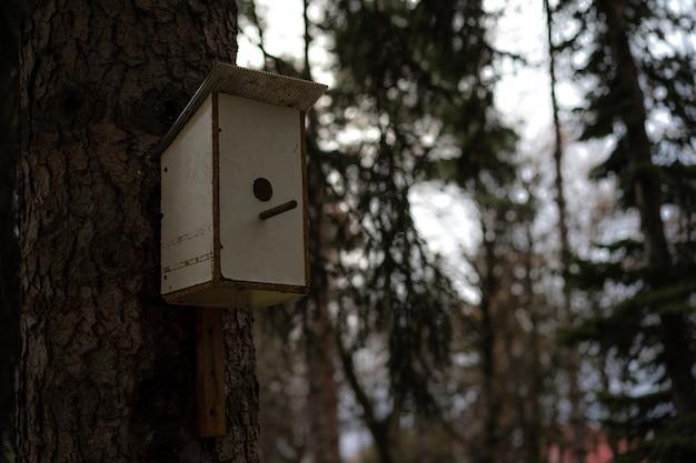 Vogelhuisje voor vogels gemonteerd op een boom