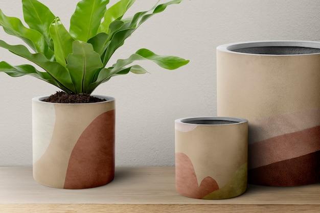 Vogelnest varenplant in een beige pot