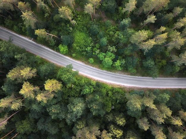 Vogelperspectief van de drone naar een lege weg door het bos met hoge bomen. bovenaanzicht.