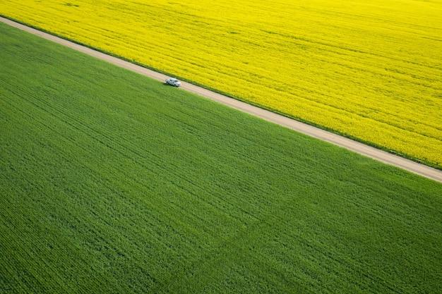 Vogelperspectief van een groot veld met een smalle weg in het midden tijdens een zonnige dag