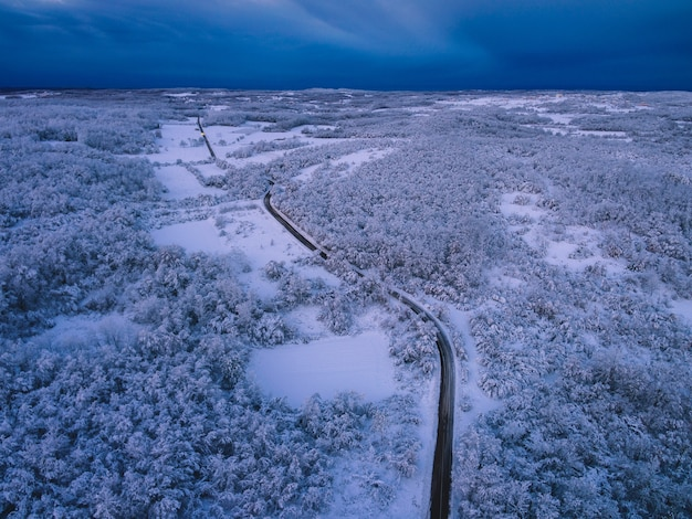 Vogelperspectief van een weg omgeven door bomen bedekt met de sneeuw onder een bewolkte hemel in de avond
