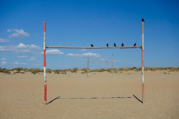 Vogels op rood en wit doel op het strand