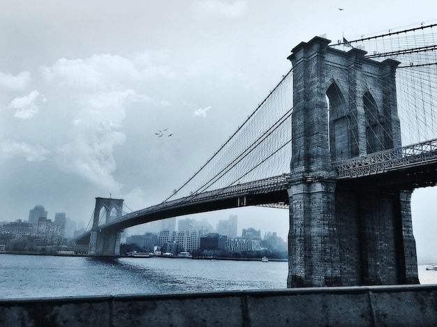 Vogels vliegen over de brooklyn bridge in new york city, verenigde staten