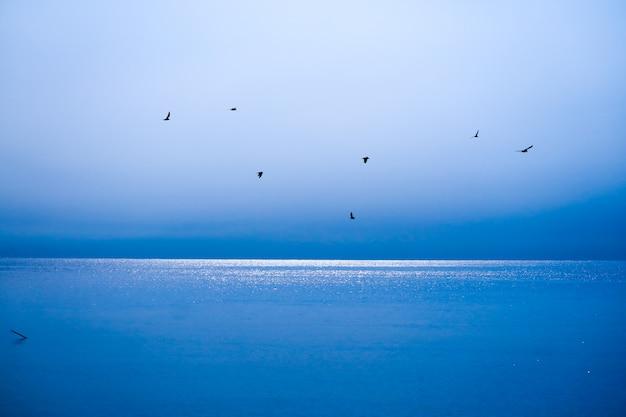 Vogels vliegen weg naar huis over de blauwe zee en de blauwe lucht