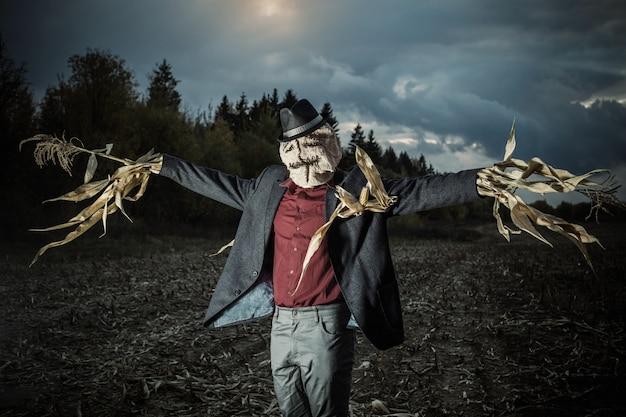 Vogelverschrikker staat in de herfst veld in de nacht