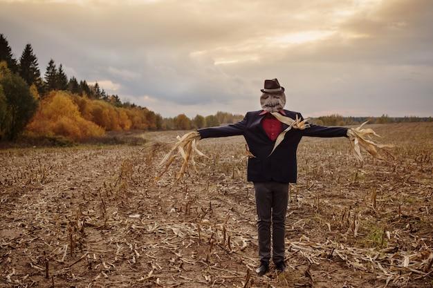 Vogelverschrikker staat in de herfst veld tegen de avondlucht