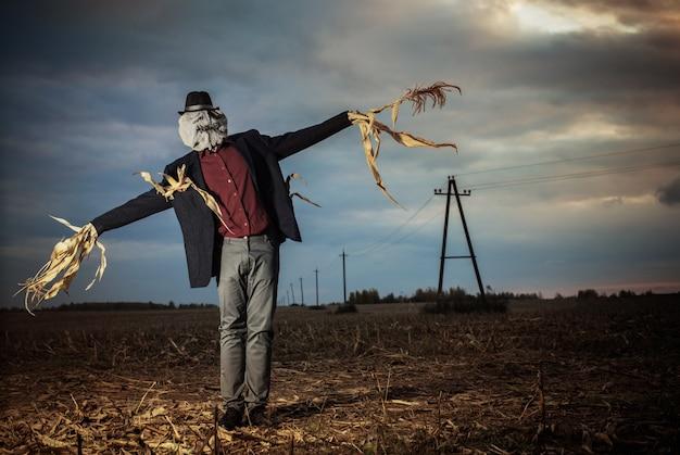 Vogelverschrikker staat in het herfst veld tegen de avondlucht