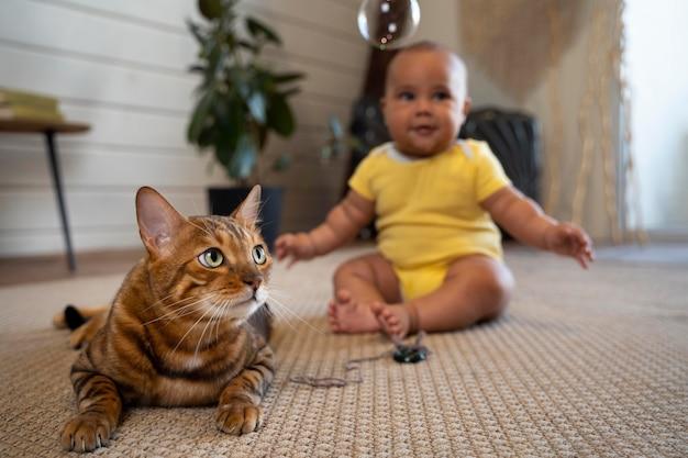 Volledig geschoten wazige baby en kat op de vloer