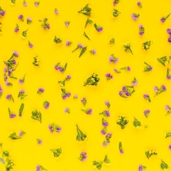 Volledig kader van roze bloemen die op gele achtergrond worden uitgespreid
