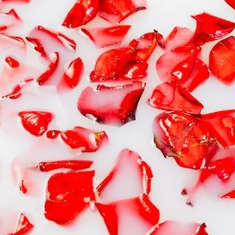 Volledig kaderschot van rode bloembloemblaadjes die op water drijven