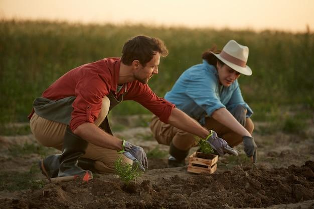 Volledig lengteportret van twee mensen die in gebied bij groenteplantage werken, nadruk op jonge mens die jonge boompjes op voorgrond planten, exemplaarruimte