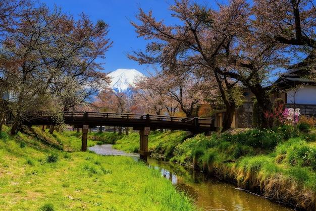 Volledige bloei roze sakura of kersenbloesem in het dorp van oshino hakkai met mt. fuji