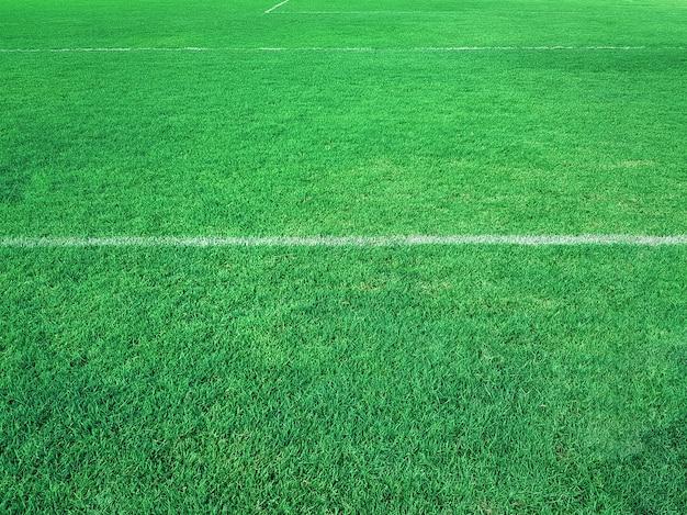 Volledige kaderachtergrond van vers groen voetbalgebied bij stadion