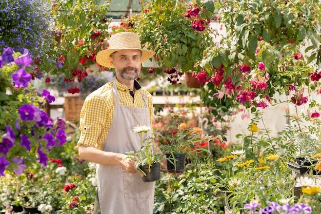 Volwassen boer met twee bloempotten met nieuwe soorten bloemen terwijl hij tussen bloeiende potplanten in de tuin staat