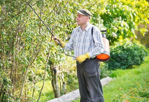Volwassen man struiken in de tuin sproeien