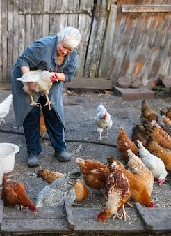 Volwassen vrouw met een kip op een boerderij