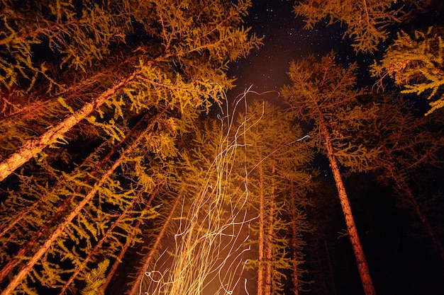 Vonken van een vreugdevuur nacht in het bos vliegen in de lucht. vuur in het bos onder een sterrenhemel