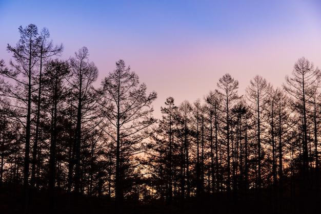 Voor zonsondergang