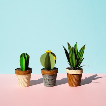 Vooraanzicht arrangement van cactussen met kopie ruimte
