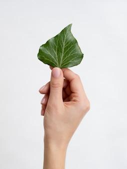 Vooraanzicht dat van hand een blad houdt