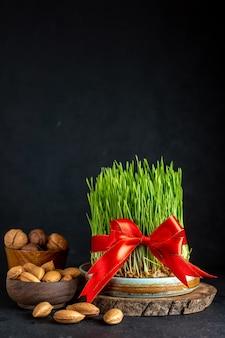 Vooraanzicht groen semeni met rode kegelnoten en walnoten op donkere ondergrond