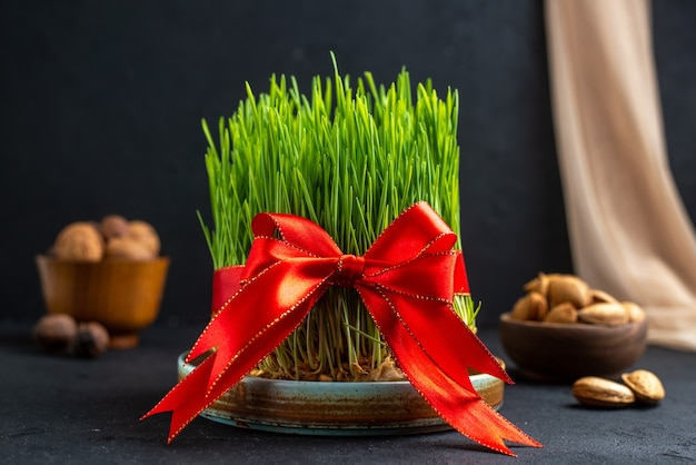 Vooraanzicht groene vakantie semeni met rode strik op donkere ondergrond