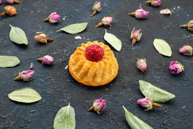Vooraanzicht kleine cake met enkelvoudige framboos bovenop geïsoleerd op het donkere oppervlak cake zoet koekje