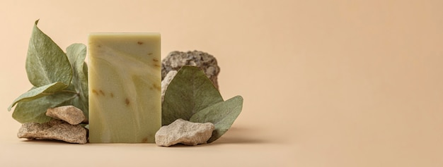 Vooraanzicht opstelling van zeep en speciale planten met kopie ruimte