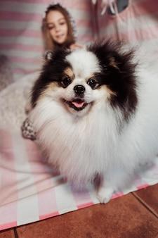 Vooraanzicht schattige hond en wazig meisje