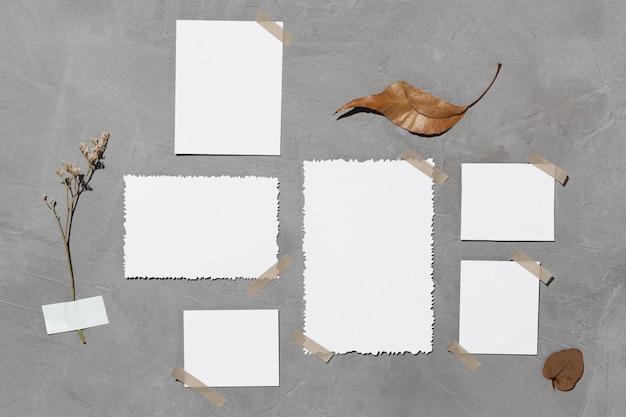 Vooraanzicht van blanco wit papier met blad