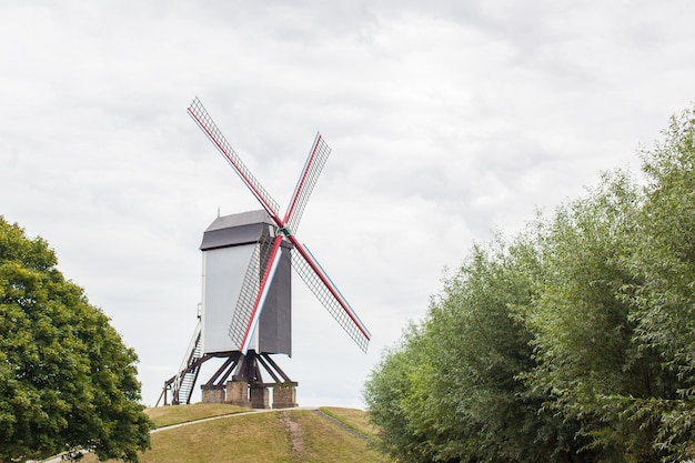 Vooraanzicht van de traditionele windmolen met rode vleugels onder een strakblauwe lucht op de groene heuvel in brugge