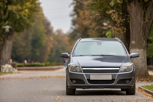 Vooraanzicht van grijze glanzende lege auto geparkeerd in een rustige omgeving op brede steeg onder grote bomen op wazig groen