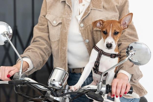 Vooraanzicht van hond en vrouw op scooter